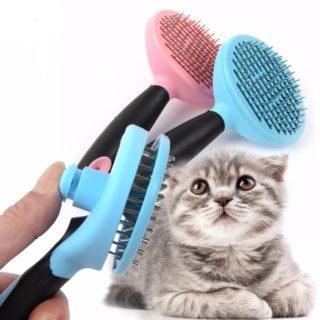Как избавиться от кошачьей шерсти в квартире, как убрать шерсть, советы