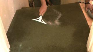 Как почистить кота от шерсти