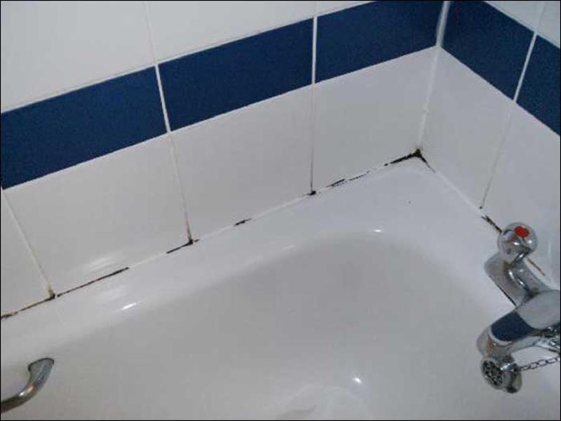 Как убрать плесень в ванной на герметике, чем убрать грибок с герметика в ванной