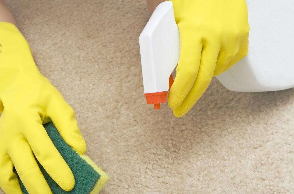 Как отмыть ковер в домашних условиях от пятен фото