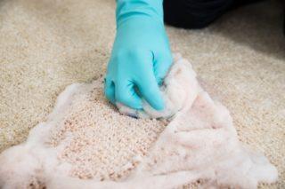 Как очистить лизуна от ковра