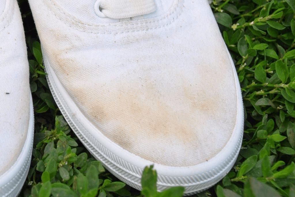 Как отстирать белые кеды без жёлтых разводов вручную и в стиральной машине, как высушить без деформации