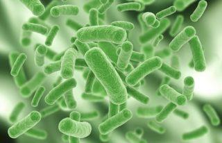 Надлежащую работу септика обеспечивают бактерии. Чтобы они не погибли, необходимо пользоваться специальными средствами