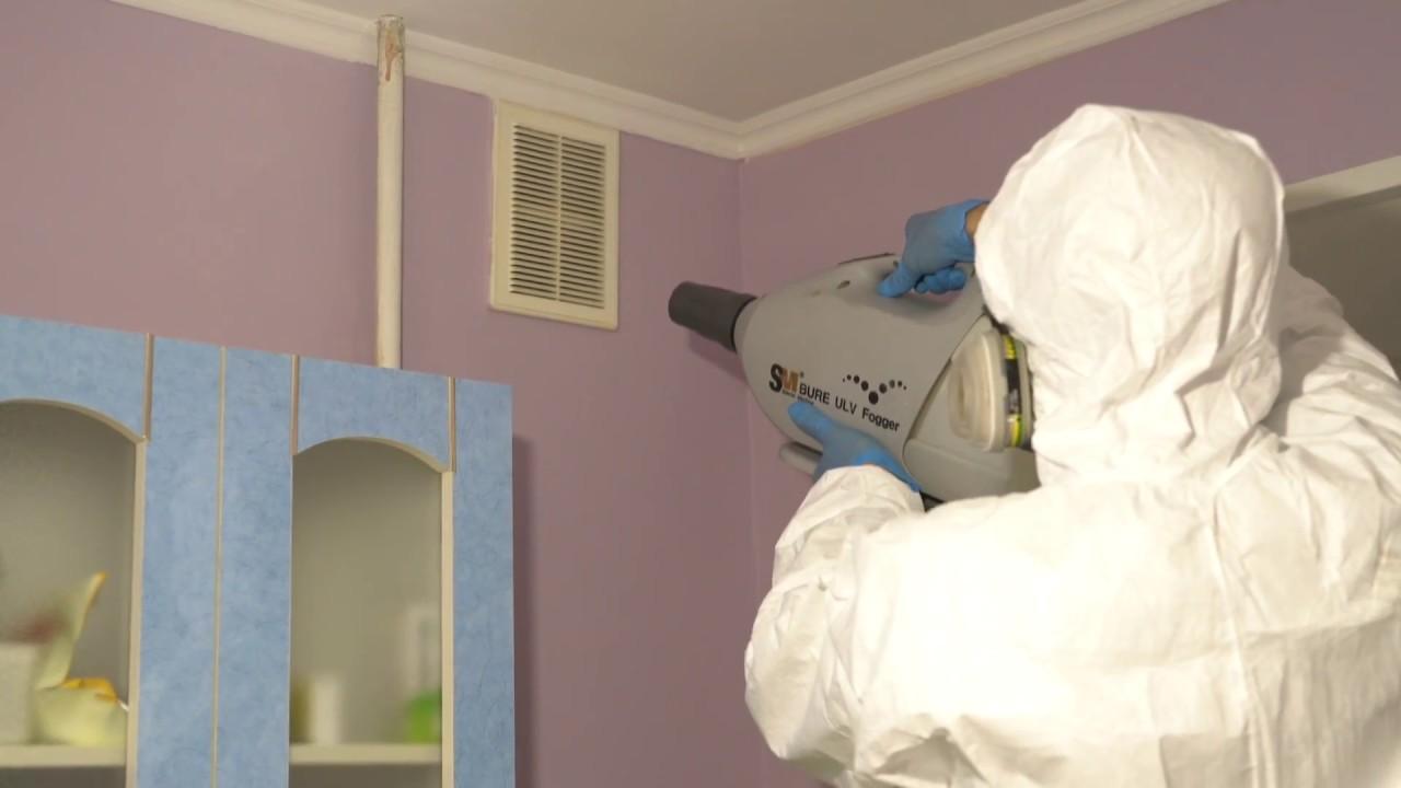 Санитарная обработка квартиры от тараканов