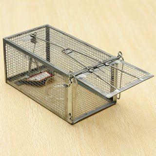 Как избавиться от крыс в гараже