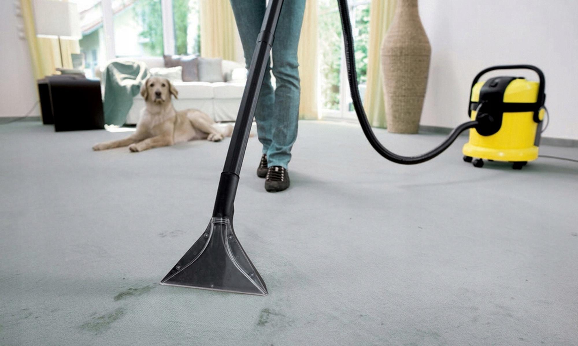 Пылесосы для ковров: как выбрать моющий профессиональный пылесос для чистки ковролина? Особенности моделей для мойки мягкой мебели