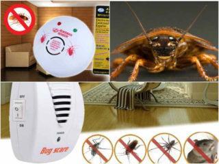 Как убрать тараканов из микроволновки